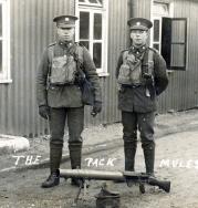 G071 Devonshire Regiment