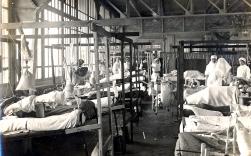 W043 Unnamed hospital ward